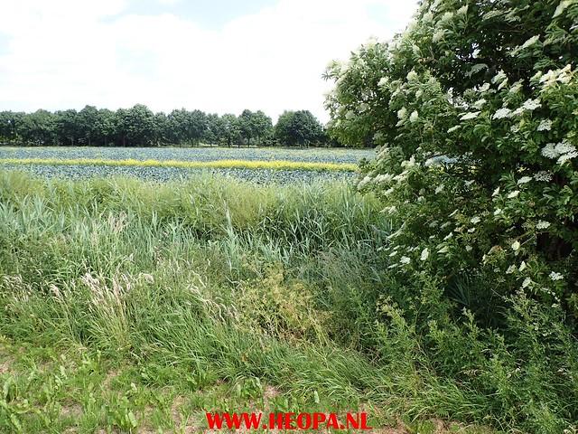 2017-06-05      Almere 30 Km (51)