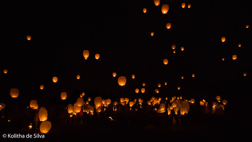 North Carolina Lantern Festival | by dkolitha