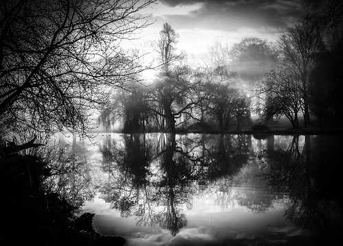 reflection water lake trees gardens simonandhiscamera syon syonhousepark syonpark syonhouse symmetry fog middlesex mist bw blackandwhite brentford beauty composition enchanted isleworth london landscape monochrome nature outdoor shade sky vignette woods hazy tree