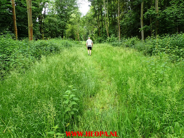 03-06-2017 Pinkster        Wandeling 30 Km (18)