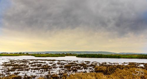california coyotehillsregionalpreserve fremont pond unitedstates water clouds wetlands marsh landscape
