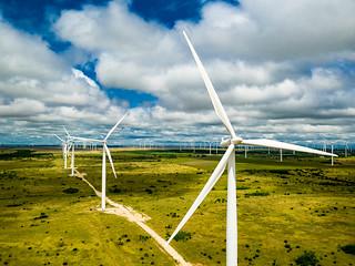 Texas Wind Farms 1 | by Daxis