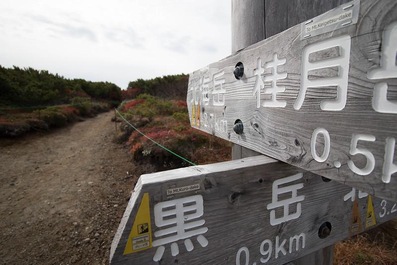 20150918-大雪山黒岳-0443.jpg