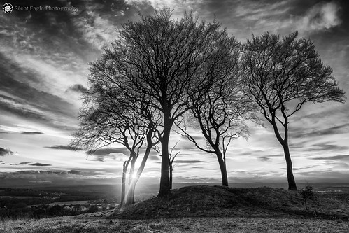 sep silent eagle photography bernacer silenteaglephotography hill copthill sevensistersroundbarrow bw mono sunray sky tree landscape outdoor silenteagle09 clouds shadows northeast seaham