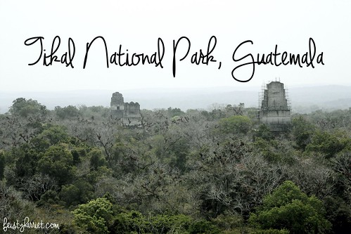 Tikal Guatemala_feistyharriet_April 2017 (16)   by FeistyHarriet