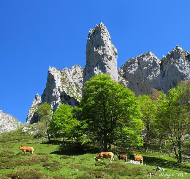 Valle de Ambenes, Sobrefóz, Ponga.