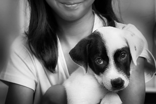 Until one has loved an animal a part of one's soul remains unawakened.  -Anatole France- | by Irudayam