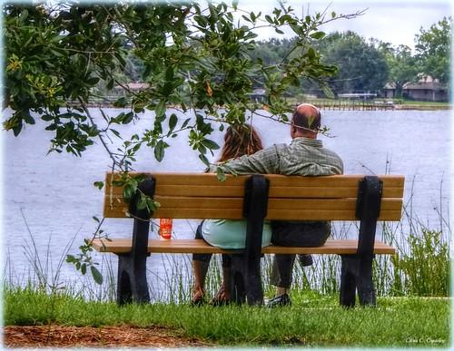 lovebytheriver couple marriage people husbandandwife parkbench river halifaxriver amespark ormondbeachfl