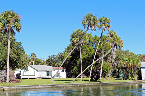 bay water waterfront house palmtrees clearsky crystalriver florida