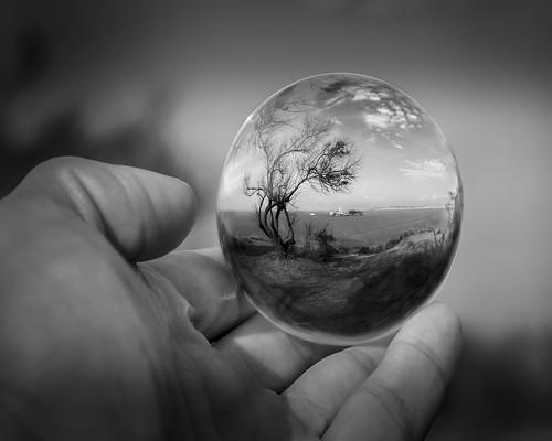 10 - Cuida el mundo, está en tus manos - Sergio Saavedra | by Asociación Amigos Fotografos