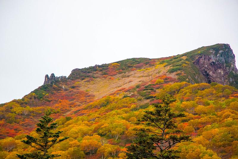 20150918-大雪山黒岳-0082.jpg