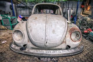 IMG_6655   by Andrey Acorbusie