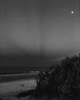 Moonrise Palm Coast - iPhone 6s