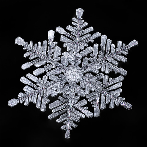 snowflake snow flake ice crystal water frozen winter nature macro focusstacking balance symmetry physics science fractal
