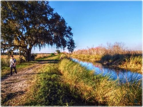 addapersonforscale lakewoodruffnationalwildliferefuge deleonspringsflorida canal wetlands park tree nature woman walking