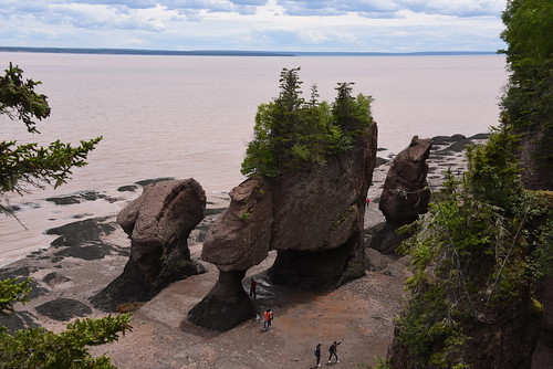 hopewell rocks called flowerpots simply rock formations caused tidal erosion ocean exploration site new brunswick stand 40–70 feet tall located shores upper reaches bay fundy cape near moncton extreme range base covered water twice day however possible view ground level low tide nikon d750 28300mm f3556 lowercape newbrunswick canada