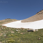 Snowfield on Goat Mountain