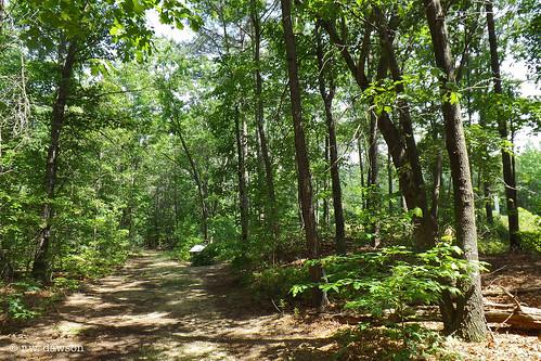 dinwiddiecounty virginia va usa landscape civilwarsite civilwar park