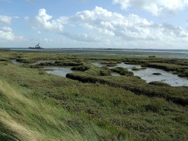Marshes near Hoo St Werburgh