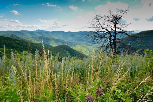 sky mountains shenandoah blueridge nationalforest nationalpark nps summer nikon outdoor brownmountain clouds landscape