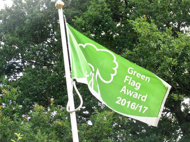 Green flag 1