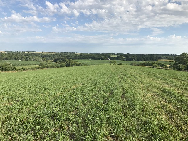Iowa Ranches For Sale - RANCHFLIP.com