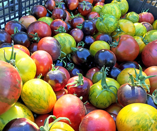 Tomatoes | by Oregon Department of Agriculture