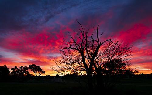 61403327236 australia camera cloudy conditions d810 default filters lens location markmcintosh miscellaneous nikon nikond810 nikongpsunitgp1a pcenikkor24mmf35ded perryspaddock sunrise wa westernaustralia yellagongaregionalpark macr237gmailcom ©markmcintosh