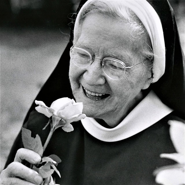 Mercy Sister stopping to smell the Roses Sr. Cyril Maloney, RSM