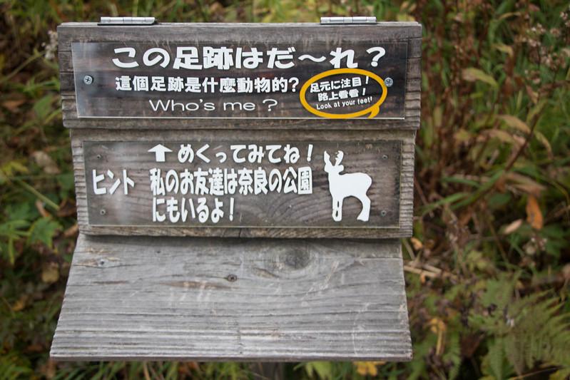 20150918-大雪山黒岳-0066.jpg