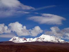 Hualca Hualca