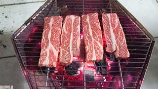 Family BBQ | by MJ Klein | TheNHBushman.com