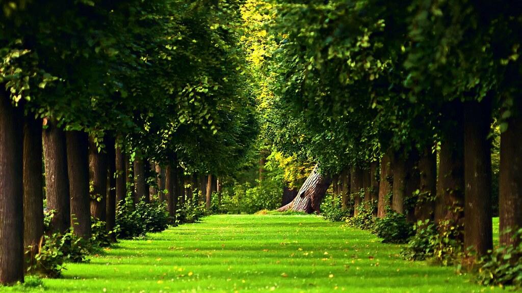 3d images hd - nature landscape best 3d wallpapers for des