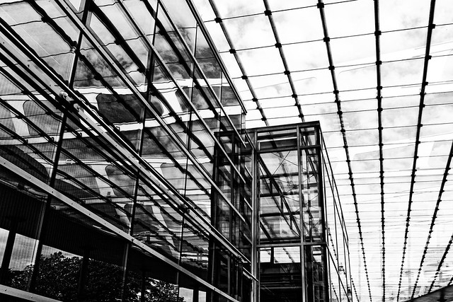 in the glass house