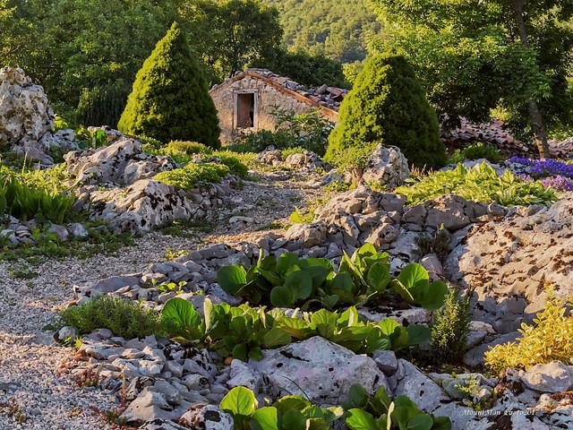Jedan prizor iz vrtova cvijeća s kamenjara u Slumu kod gospođe Anite (14)