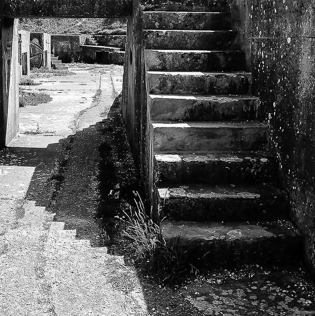 Steps & Shadows