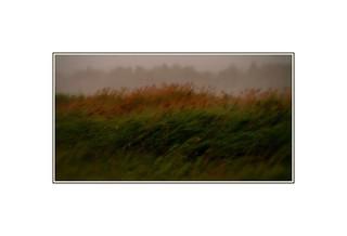 L'orage / Storm DSCF0478 2 copie | by bernard marenger photo imagination