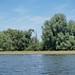 "<p><a href=""https://www.flickr.com/people/115295177@N06/"">tomislav.ozanic</a> posted a photo:</p>  <p><a href=""https://www.flickr.com/photos/115295177@N06/35266434346/"" title=""Baranja 05-2017  0731""><img src=""https://live.staticflickr.com/4219/35266434346_6a1e245d2b_m.jpg"" width=""160"" height=""240"" alt=""Baranja 05-2017  0731"" /></a></p>  <p></p>"