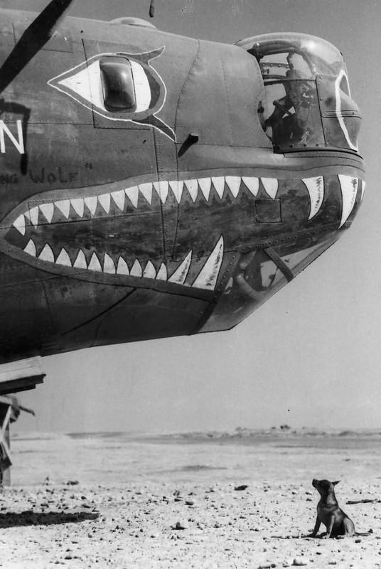 En B-24 Liberator