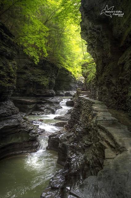 Watkins Glen State Park Gorge Trail