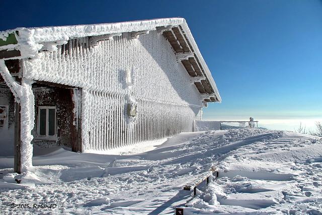 Eiszeit - Ice Age