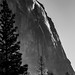 Yosemite NP - El Capitan by nebulous 1