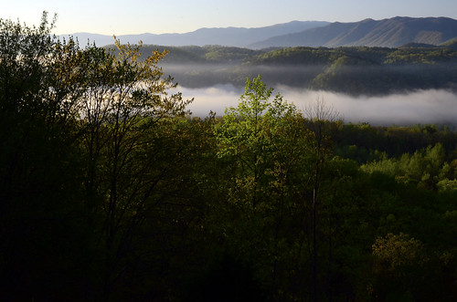 the golden hour sunrise sunset thegoldenhour rrpa0517 smokymountains foothillsparkway smokies mountains gsmnp nationalpark park national smoke fog mist valley
