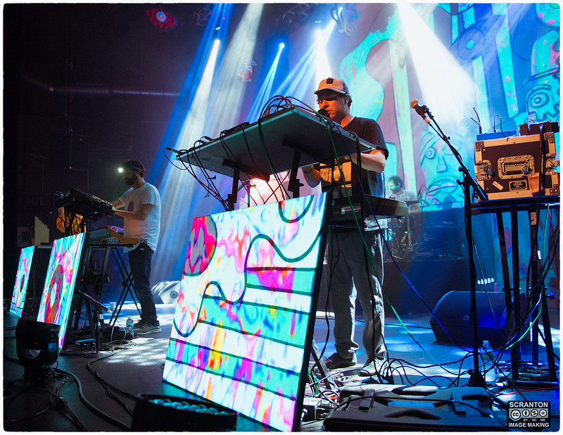Animal Collective-12.jpg