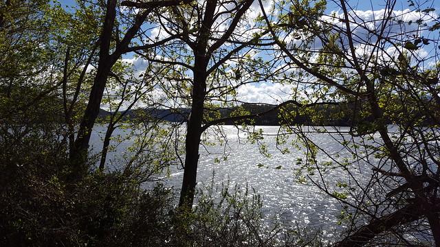 Parksville Lake