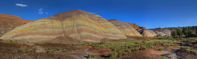 Rainbow Chinle at Painted Desert