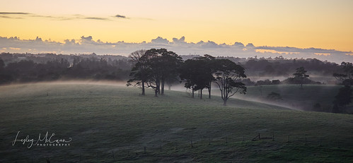 trees field hill farm sunrise