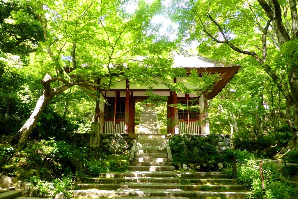 Jojakko-ji, Niomon (Gate of Deva King) -1 (June 2017)