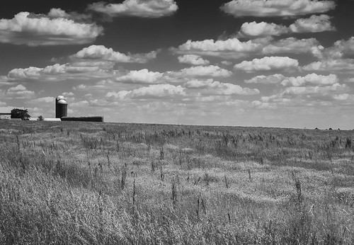 ohio farm field country rural blackandwhite bw monochrome niksep olympusstylustoughtg4 tg4 olympus geotagged raw orf cc7