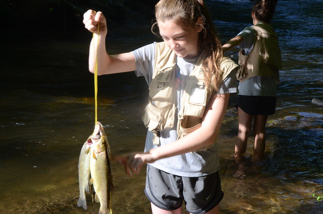 Chattahoochee-Oconee National Forests - News & Events